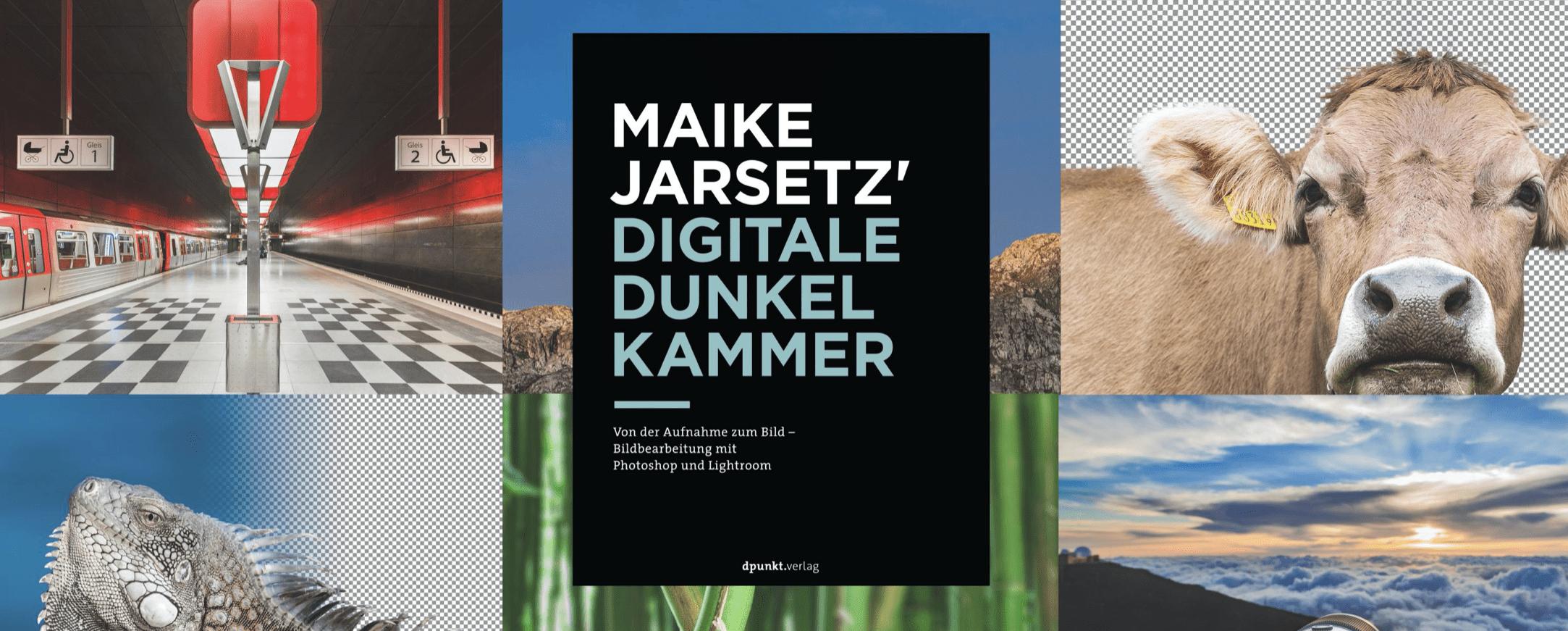 Heidelberger Sommerschule: Online Seminare Digitale Dunkelkammer